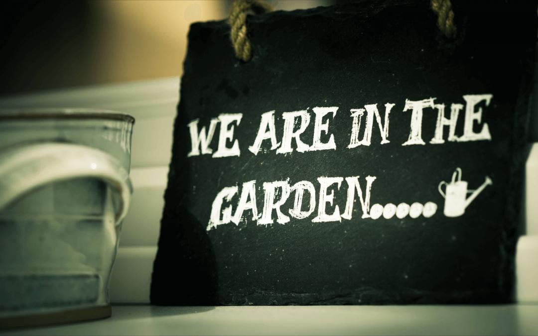 Gartenarbeit auch ohne grünen Daumen